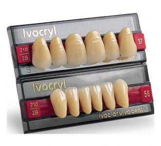 Фронтальные зубы форма 52, цвет 220, низ, 6шт
